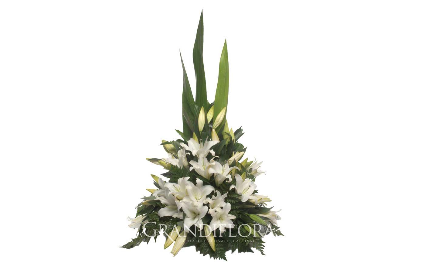 Arranging A Funeral Botanical Funerals